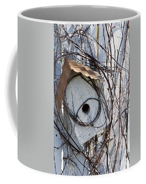Birdhouse Coffee Mug featuring the photograph Birdhouse Brambles by Lauri Novak