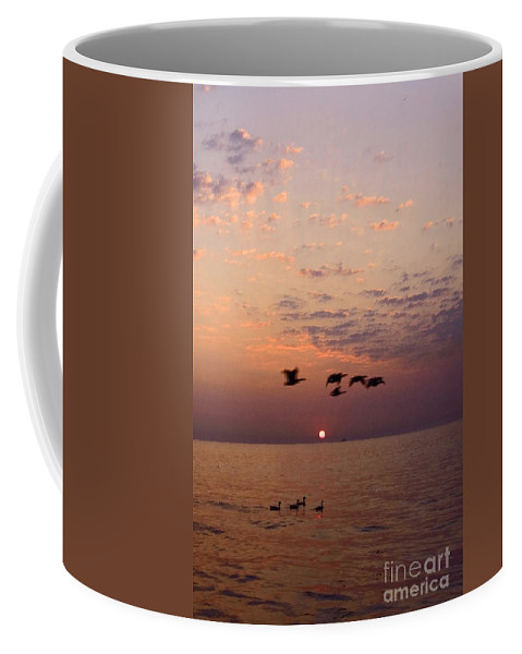 Ducks Coffee Mug featuring the photograph Birds Flying And Floating At Sunrise by Sven Brogren