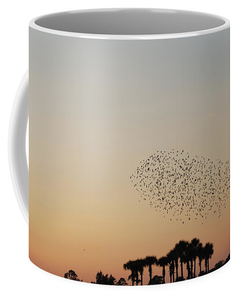 Nature Coffee Mug featuring the photograph Birds In The Sun by Rob Hans