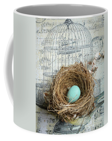 Bird Coffee Mug featuring the photograph Birds Nest by Edward Fielding