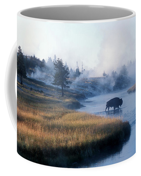 Wyoming Coffee Mug featuring the photograph Bison Crosses The Firehole River by Michael S. Lewis