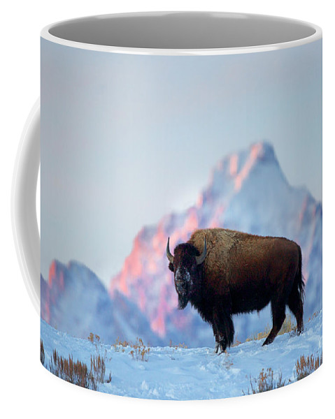 Bison Coffee Mug featuring the photograph Bison Mountain Sunset by Daryl L Hunter