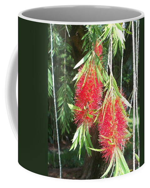 Florida Coffee Mug featuring the photograph Bittersweet Bloom II by Chris Andruskiewicz