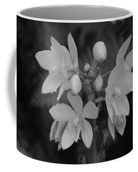 Macro Coffee Mug featuring the photograph Black And White Flower by Rob Hans