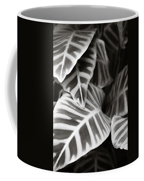 Black Coffee Mug featuring the photograph Black And White Leaves by Marilyn Hunt