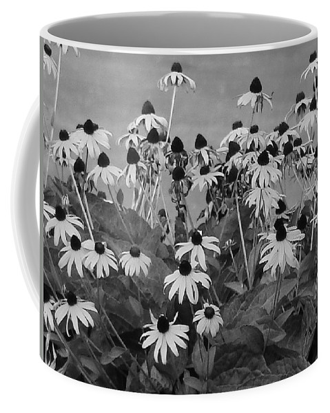 Coffee Mug featuring the photograph Black And White Susans by Luciana Seymour