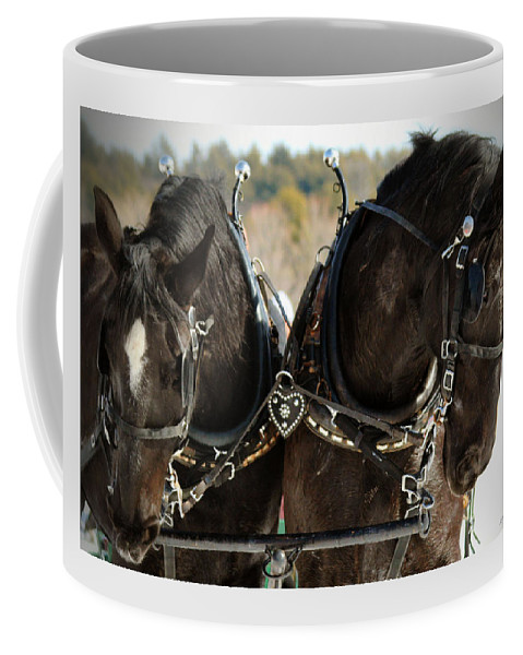 Animals Coffee Mug featuring the photograph Black Beauties by Sandra Huston