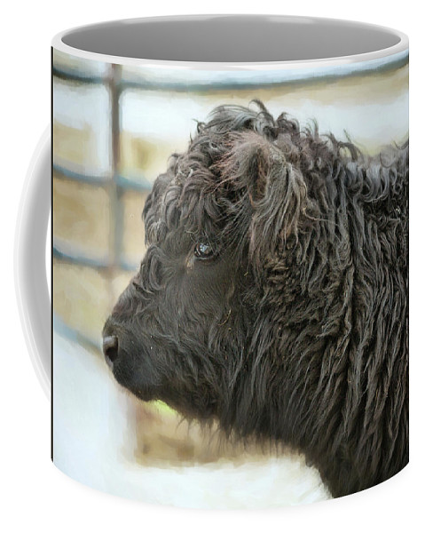 Animals Coffee Mug featuring the photograph Black Cow by Sue Collura