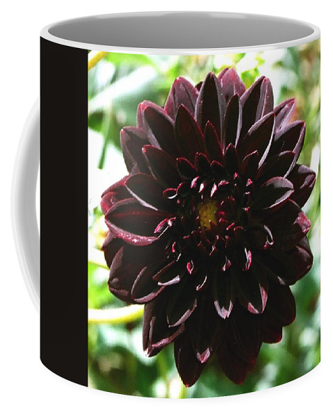 Flower Coffee Mug featuring the photograph Black Dalia by Dean Triolo