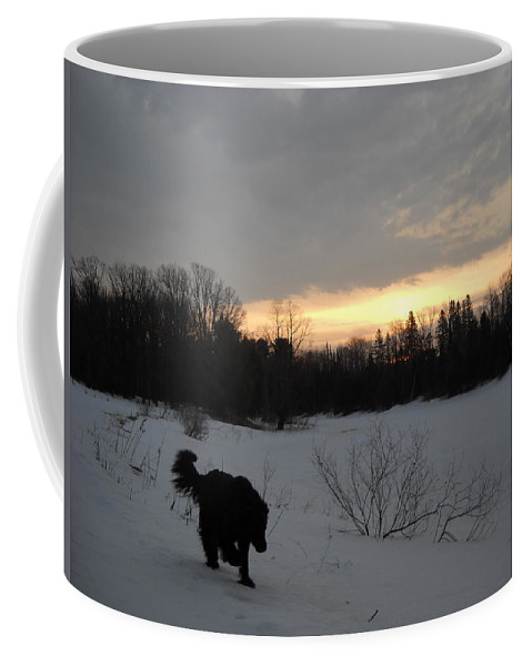 Dog Coffee Mug featuring the photograph Black Dog Exploring Snow At Dawn by Kent Lorentzen
