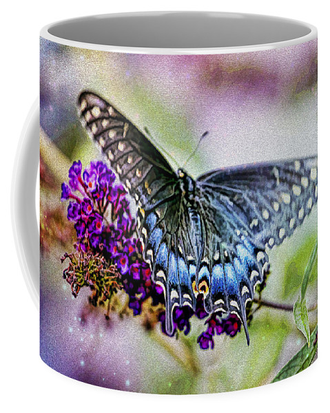 Recent Coffee Mug featuring the photograph Black Eastern Swallowtail by Geraldine Scull