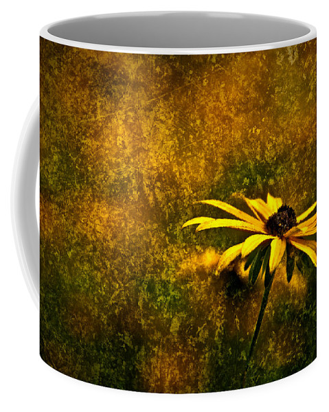 Black-eyed Susan Coffee Mug featuring the photograph Black-eyed Susan And Granite by Onyonet Photo Studios