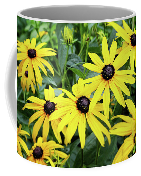 Daisies Coffee Mug featuring the photograph Black Eyed Susans- Fine Art Photograph By Linda Woods by Linda Woods