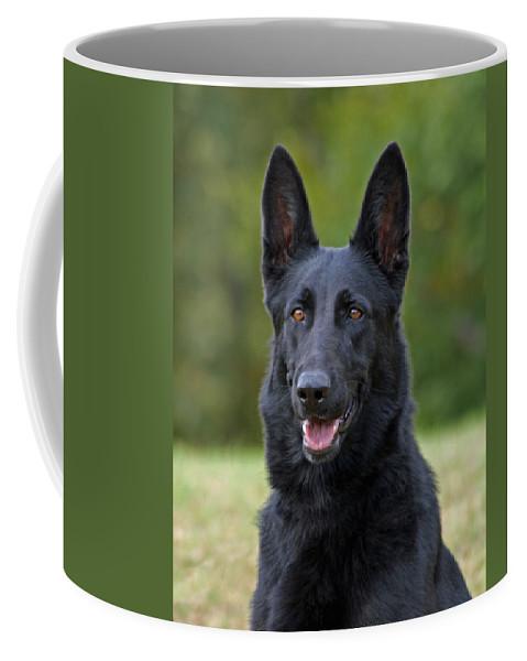 German Shepherd Coffee Mug featuring the photograph Black German Shepherd Dog by Sandy Keeton