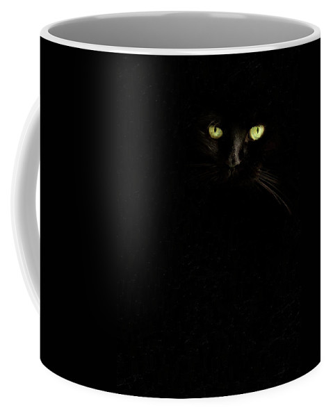Animals Coffee Mug featuring the photograph Black On Black by Sue Collura