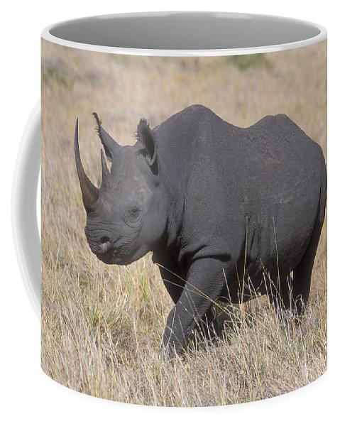 Rhinoceros Coffee Mug featuring the photograph Black Rhino On The Masai Mara by Sandra Bronstein