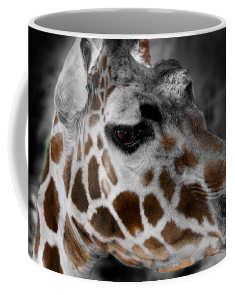 Giraffe Coffee Mug featuring the photograph Black White And Color Giraffe by Anthony Jones