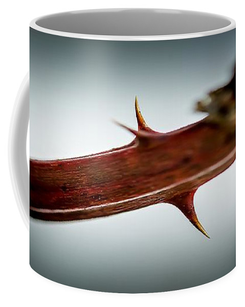 Blackberry Coffee Mug featuring the photograph Blackberry Thorns by Sherman Perry