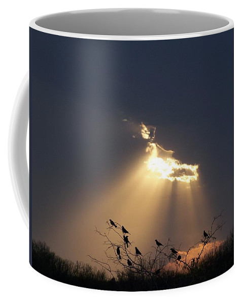 Storm Coffee Mug featuring the photograph Blackbird Sky by Gale Cochran-Smith