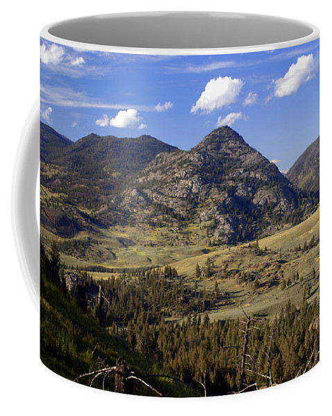 Yellowstone National Park Coffee Mug featuring the photograph Blacktail Road Landscape 2 by Marty Koch