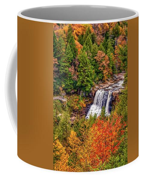 West Virginia Coffee Mug featuring the photograph Blackwater Falls Wv by Steve Harrington