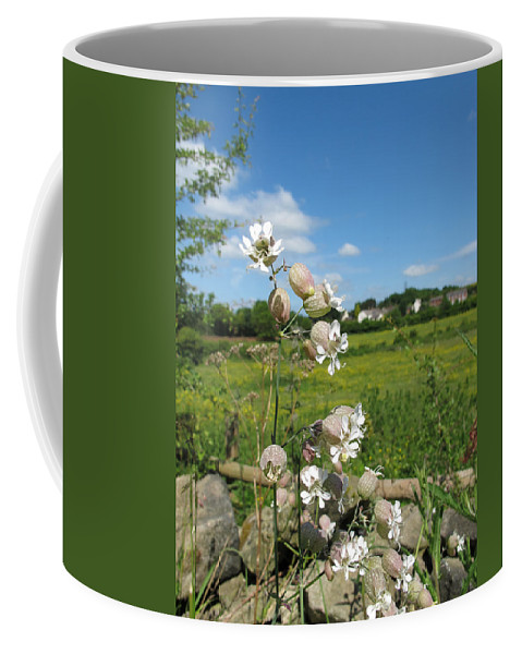 Bladder Campion Coffee Mug featuring the photograph Bladder Campion On Stone Wall by Bob Kemp