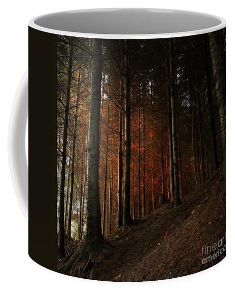Blaze Coffee Mug featuring the photograph Blazing Forest by Angel Ciesniarska