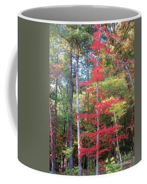 Arkansas Coffee Mug featuring the photograph Blazing Red by Sandra McClure