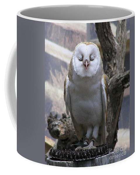 Barn Coffee Mug featuring the photograph Blinking Owl by Louise Magno