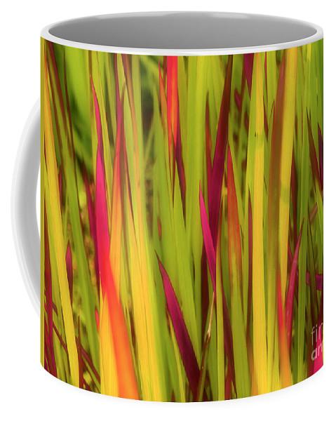 Grass Coffee Mug featuring the photograph Blood Grass by Tara Turner