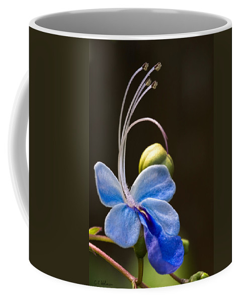Flower Coffee Mug featuring the photograph Blooming Butterfly by Christopher Holmes