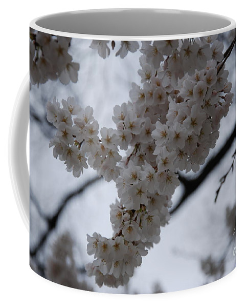 Blossoms Coffee Mug featuring the photograph Blossoms Of Dc by Katherine W Morse