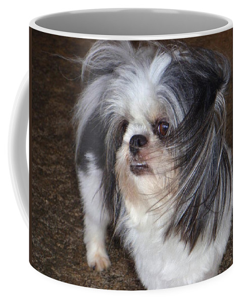 Mary Deal Coffee Mug featuring the photograph Blowing In The Wind by Mary Deal