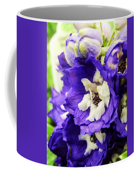 Blue And White Delphiniums Coffee Mug featuring the photograph Blue And White Delphiniums by Cynthia Woods