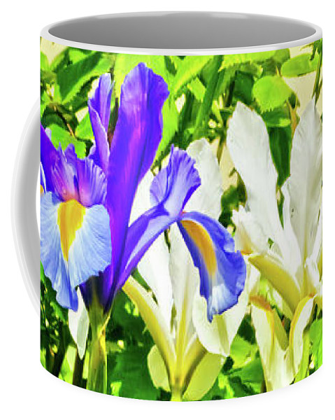 Flower Coffee Mug featuring the photograph Blue And White Iris by Terri Waters