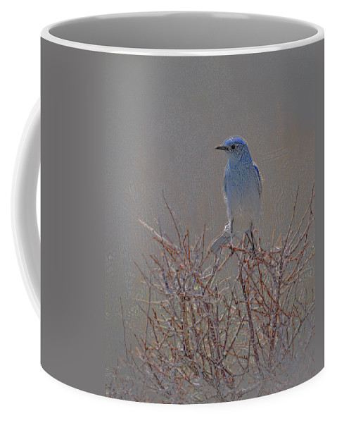 Colored Pencil Coffee Mug featuring the photograph Blue Bird Colored Pencil by Heather Coen