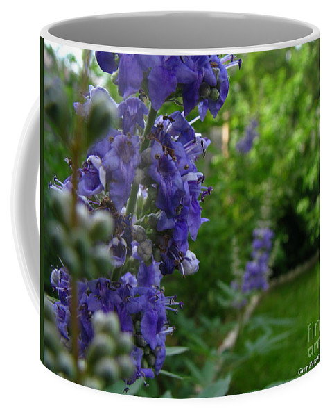 Art For The Wall...patzer Photography Coffee Mug featuring the photograph Blue Butterfly by Greg Patzer