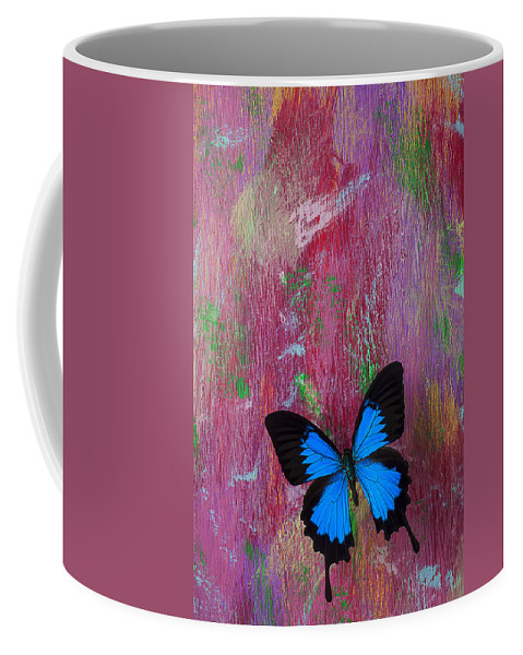Blue Butterfly Coffee Mug featuring the photograph Blue Butterfly On Colorful Wooden Wall by Garry Gay