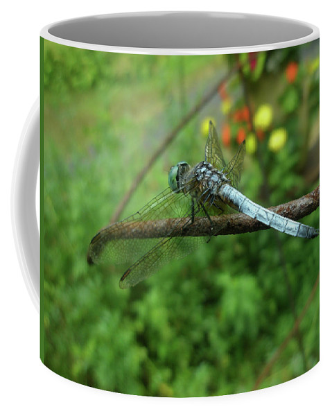 Dragonfly Coffee Mug featuring the photograph Blue Dragonfly by Mother Nature