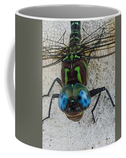 Dragonfly Coffee Mug featuring the photograph Blue Eyes by Tim Fusco