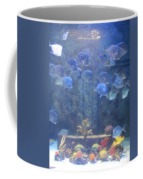 Fish Coffee Mug featuring the photograph Blue Fish by Michelle Powell