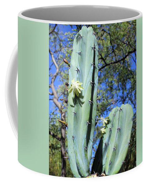 Coffee Mug featuring the photograph Blue Flame Flowering by M Diane Bonaparte