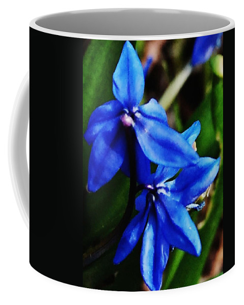Digital Photo Coffee Mug featuring the photograph Blue Floral by David Lane