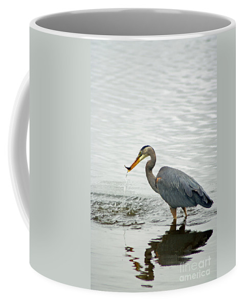 Blue Coffee Mug featuring the photograph Blue Heron Fishing by Louise Magno