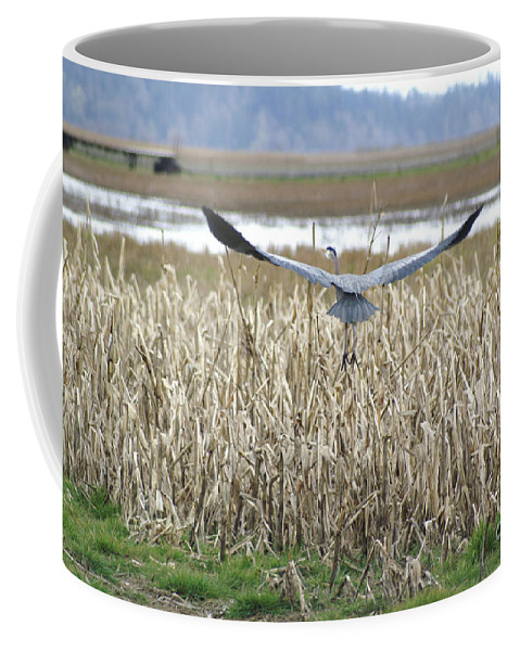 Heron Coffee Mug featuring the photograph Blue Heron Flight by Louise Magno