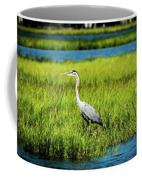 Blue Coffee Mug featuring the photograph Blue Heron by Jennifer Craft