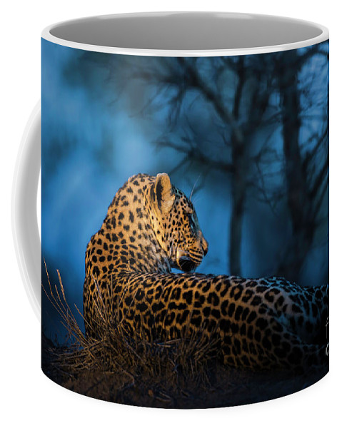 Relaxing Coffee Mug featuring the photograph Blue Hour Leopard by Daryl L Hunter