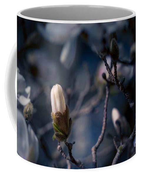Bloom Coffee Mug featuring the photograph Blue Magnolia by Joe Mamer