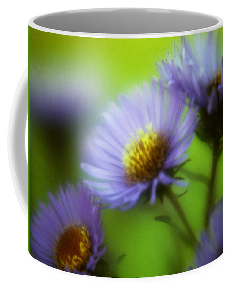 Flowers. Macrophotography Coffee Mug featuring the photograph Blue On Green by Lee Santa