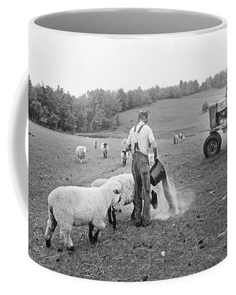 Feeding Coffee Mug featuring the photograph Blue Ridge Mountain Farmer by Buddy Mays